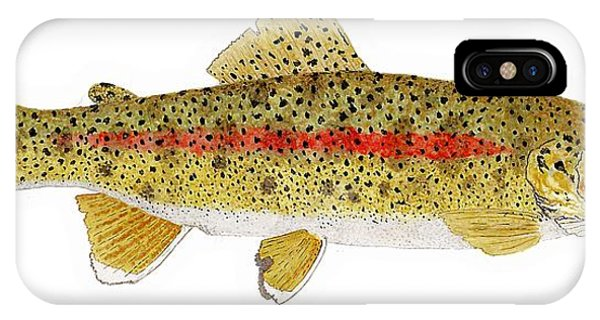 Study Of A Columbia River Erdband Trout IPhone Case