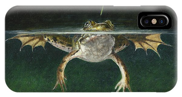 Grasshopper iPhone Case - Study Of A Grasshopper by Dreyer Wildlife Print Collections