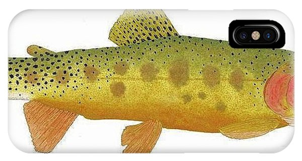 Study Of A Rio Grande Cutthroat Trout IPhone Case