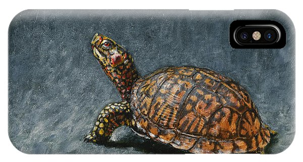 Reptiles iPhone Case - Study Of An Eastern Box Turtle by Dreyer Wildlife Print Collections