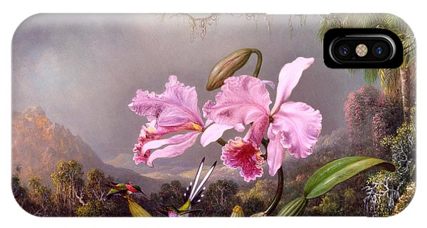 Humming Bird iPhone Case - Study Of An Orchid by Martin Johnson Heade