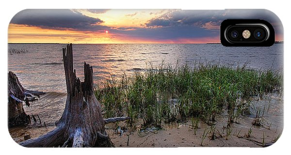 Stumps And Sunset On Oyster Bay IPhone Case