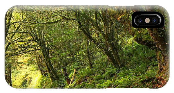Subaru In The Rainforest IPhone Case