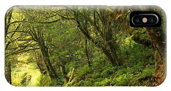 Subaru In The Rainforest IPhone Case