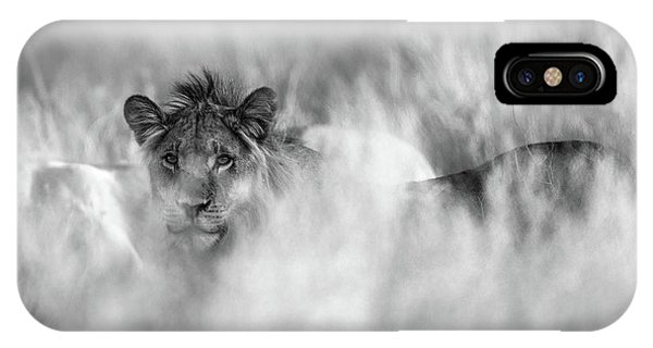 Lions iPhone Case - Subtle Mane by Jaco Marx
