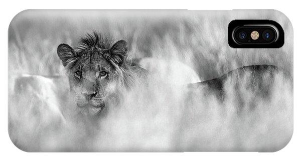 Lion iPhone Case - Subtle Mane by Jaco Marx