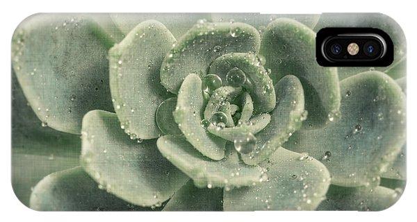 Succulent iPhone Case - Succulent by Lucid Mood