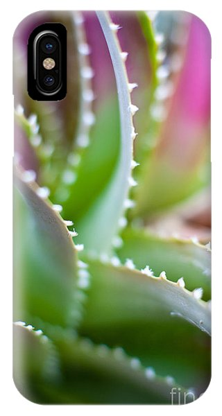 Cactus iPhone Case - Succulent Swirls by Mike Reid