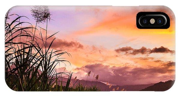 Far North Queensland iPhone Case - Sugar Cane In Far North Queensland by Silken Photography