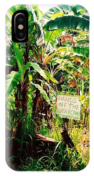 Sugarcane IPhone Case