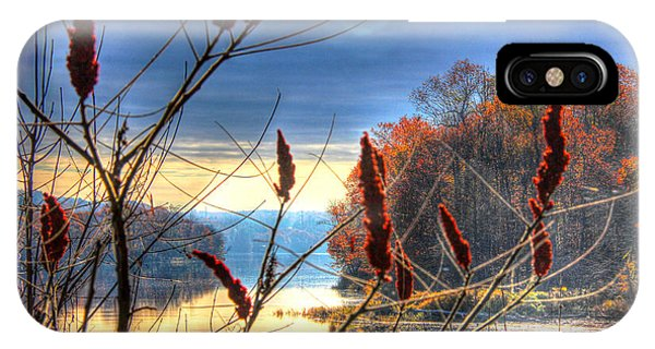 Sumacs Along The Kennebec IPhone Case