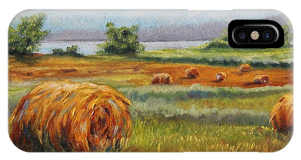 Summer Bales IPhone Case