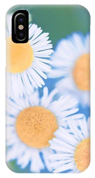 Summer Daisies IPhone Case