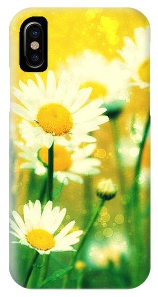 Summer Daisy IPhone Case