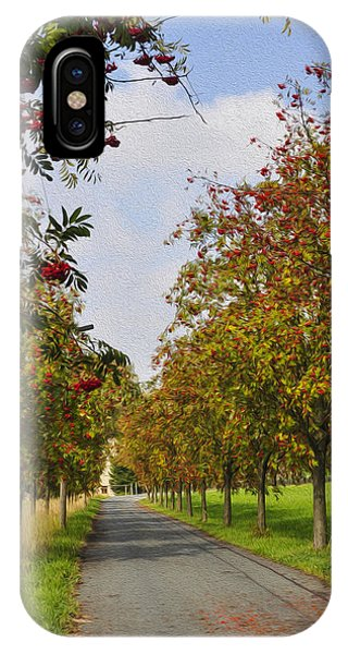 Blue Berry iPhone Case - Summer Day In The Country by Aged Pixel