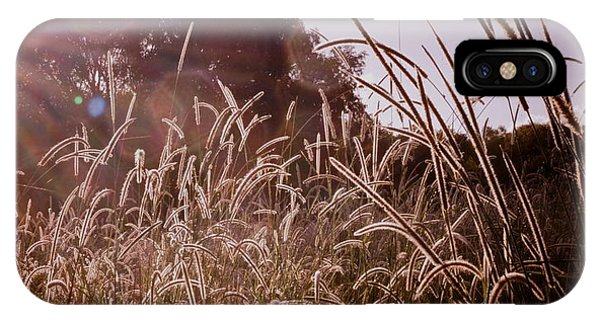 Summer Grasses IPhone Case