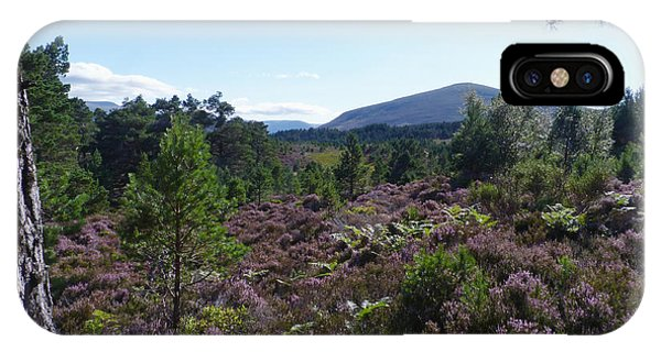 Summer In Abernethy Forest IPhone Case