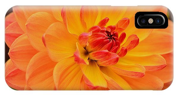 Summer's End Phone Case by Kathi Isserman