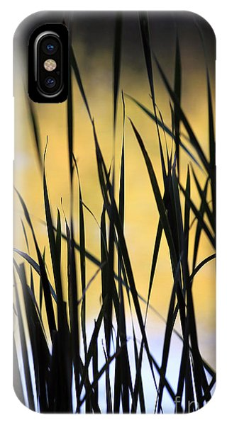 Summer's Goodbye IPhone Case