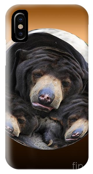 Sun Bears In A Ball IPhone Case