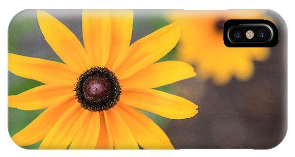 Sun Daisy IPhone Case