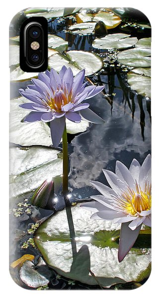 Sun-drenched Lily Pond         IPhone Case