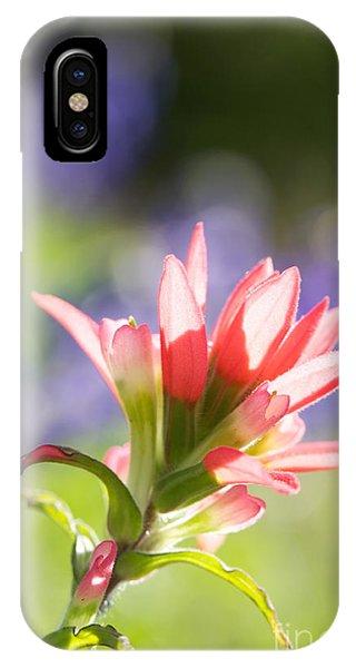 Sun Filled Paintbrush IPhone Case