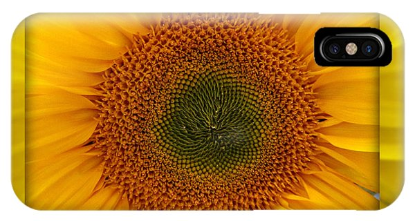 Sun Flower Dream IPhone Case