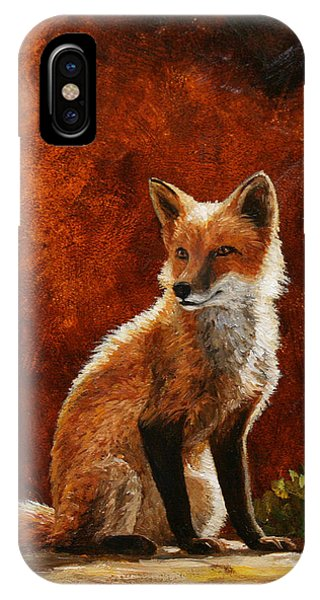 Fox iPhone Case - Sun Fox by Crista Forest