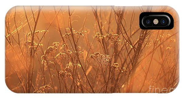 Sun Glow IPhone Case
