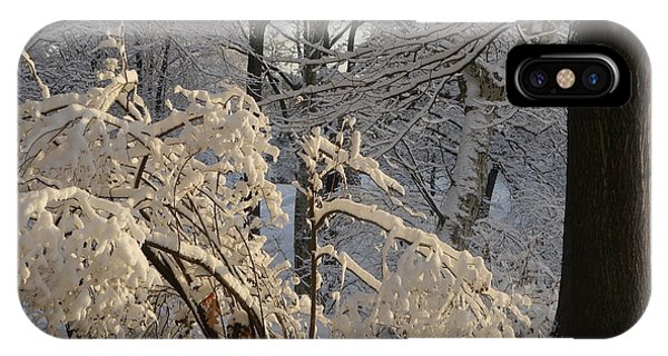 Sun On Snow Covered Branches IPhone Case
