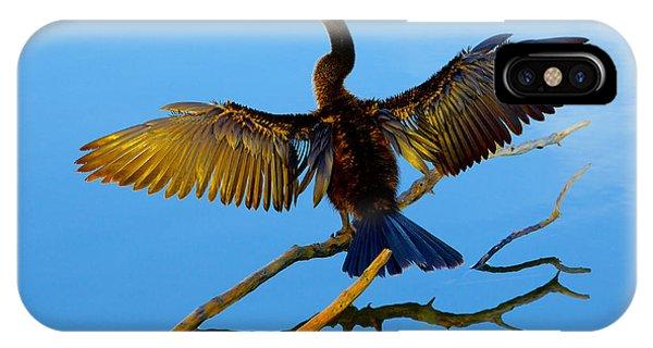 Sunbathing IPhone Case