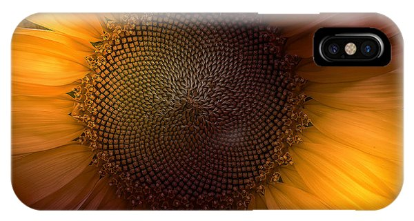 Fall Flowers iPhone Case - Sunblast by Marco Crupi