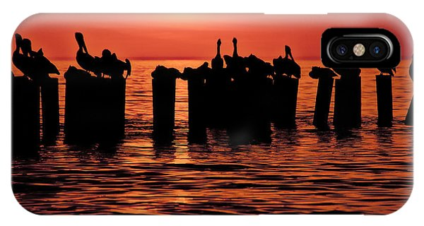 Sundown With Pelicans IPhone Case