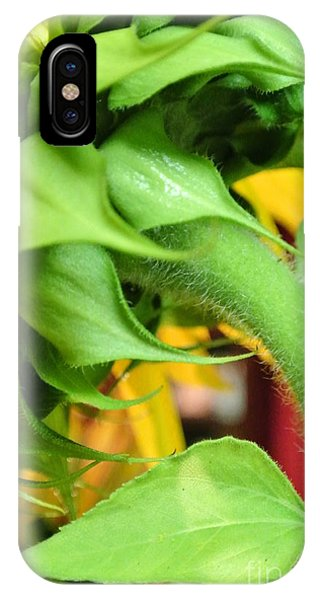 Sunflower - The Back Side IPhone Case