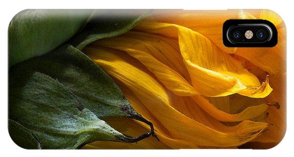Sunflower 5 IPhone Case
