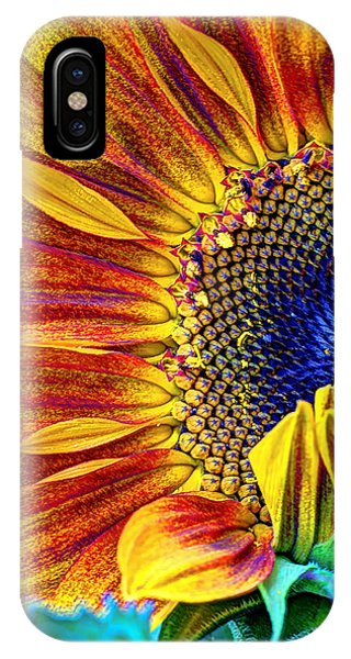 Sunflower Seeds iPhone Case - Sunflower Abstract by Heidi Smith
