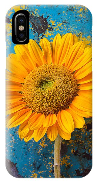 Sunflower Against Old Wall IPhone Case