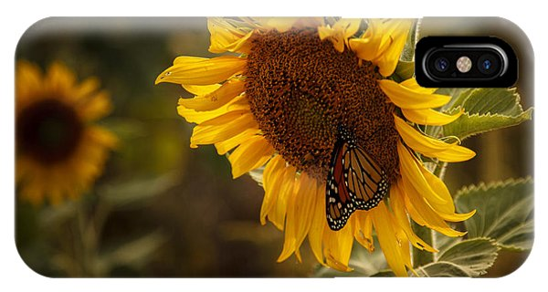 Sunflower And Butterfly IPhone Case