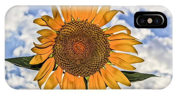 00008 Sunflower And Clouds IPhone Case
