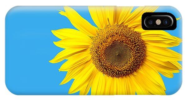 Yellow Flowers iPhone Case - Sunflower Blue Sky by Edward Fielding