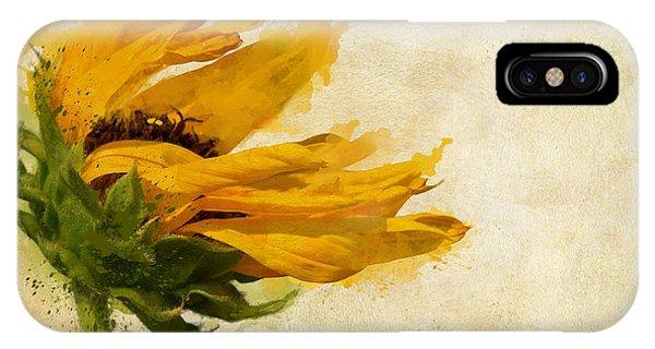 Sunflower iPhone Case - Sunflower Breezes by Nikki Marie Smith
