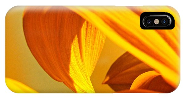 Sunflower Curve IPhone Case