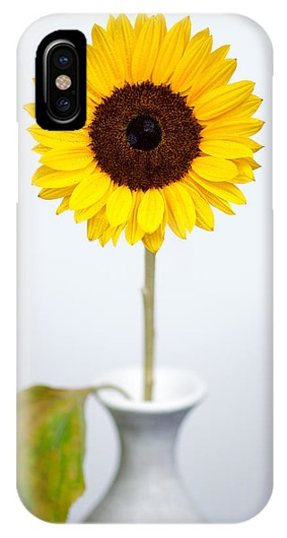 Beauty In Nature iPhone Case - Sunflower by Dave Bowman