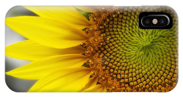 Sunflower Face IPhone Case