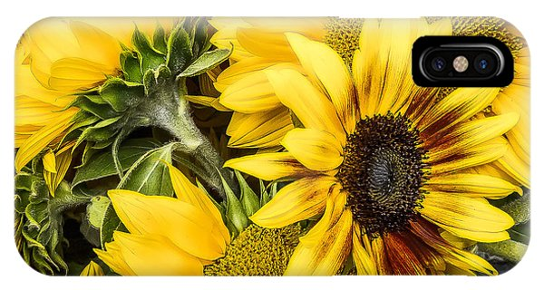 Sunflower Glow IPhone Case