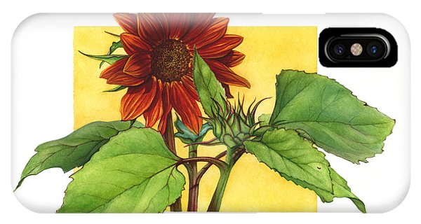 Sunflower In Red Phone Case by Suzannah Alexander