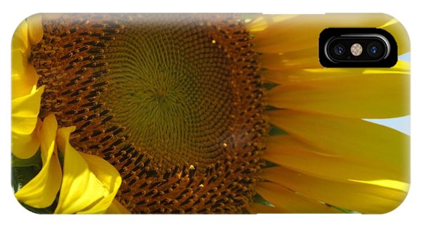 Sunflower Phone Case by Lne Kirkes