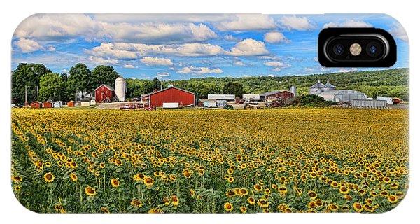 Sunflower Nirvana 17 IPhone Case