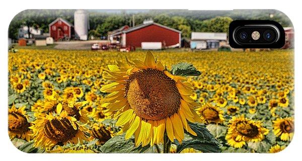 Sunflower Nirvana 21 IPhone Case